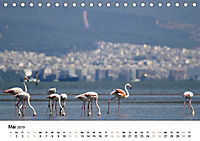 Griechenland - Von Epirus bis zu den Inseln (Tischkalender 2019 DIN A5 quer) - Produktdetailbild 5