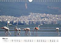 Griechenland - Von Epirus bis zu den Inseln (Wandkalender 2019 DIN A4 quer) - Produktdetailbild 5