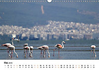 Griechenland - Von Epirus bis zu den Inseln (Wandkalender 2019 DIN A3 quer) - Produktdetailbild 5