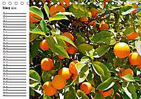 Griechische Insel Kos (Tischkalender 2019 DIN A5 quer) - Produktdetailbild 3