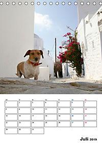 Griechisches Allerlei (Tischkalender 2019 DIN A5 hoch) - Produktdetailbild 7