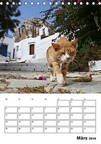 Griechisches Allerlei (Tischkalender 2019 DIN A5 hoch) - Produktdetailbild 3