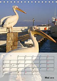 Griechisches Allerlei (Tischkalender 2019 DIN A5 hoch) - Produktdetailbild 5