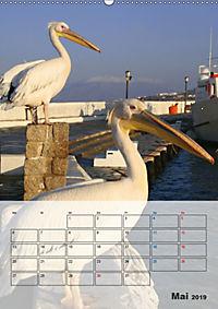 Griechisches Allerlei (Wandkalender 2019 DIN A2 hoch) - Produktdetailbild 5