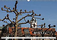 Gross Gerau vom Taxifahrer Petrus Bodenstaff (Wandkalender 2019 DIN A3 quer) - Produktdetailbild 2