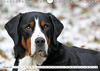 Grosser Schweizer Sennenhund (Wandkalender 2019 DIN A4 quer) - Produktdetailbild 2