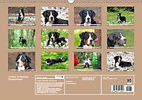 Großer Schweizer Sennenhund (Wandkalender 2019 DIN A3 quer) - Produktdetailbild 13