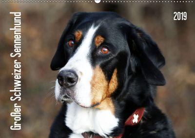 Großer Schweizer Sennenhund (Wandkalender 2019 DIN A2 quer), SchnelleWelten
