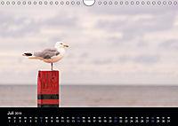 Grüße aus Texel (Wandkalender 2019 DIN A4 quer) - Produktdetailbild 3