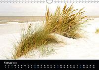 Grüße aus Texel (Wandkalender 2019 DIN A4 quer) - Produktdetailbild 2