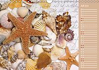Grüsse vom Meer (Wandkalender 2019 DIN A4 quer) - Produktdetailbild 7