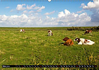 Grüsse von Pellworm (Wandkalender 2019 DIN A2 quer) - Produktdetailbild 3