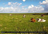 Grüße von Pellworm (Wandkalender 2019 DIN A4 quer) - Produktdetailbild 3