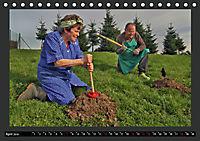 GSCHEIT BLED - Humorfotografie (Tischkalender 2019 DIN A5 quer) - Produktdetailbild 4