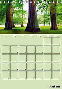 Gütersloh - Eine Stadt im Grünen (Tischkalender 2019 DIN A5 hoch) - Produktdetailbild 2