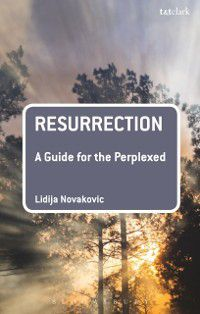 Guides for the Perplexed: Resurrection: A Guide for the Perplexed, Lidija Novakovic