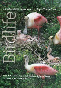 Gulf Coast Books, sponsored by Texas A&M University-Corpus Christi: Birdlife of Houston, Galveston, and the Upper Texas Coast, Robert A. Behrstock, Ron J. Weeks, Ted L. Eubanks