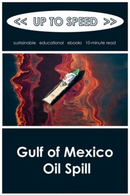Gulf of Mexico Oil Spill