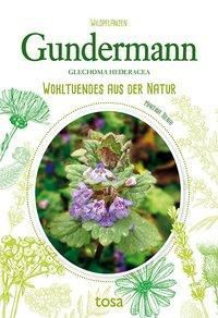 Gundermann - Glechoma Hederacea - Martina Tolnai |