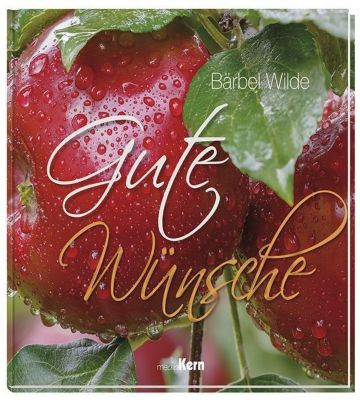 Gute Wünsche - Bärbel Wilde pdf epub