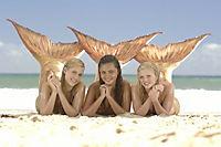 H2O: Plötzlich Meerjungfrau - Staffel 1 - Produktdetailbild 8