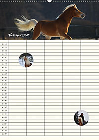 Haflinger Pferde - Stall- und Familienplaner 2019 (Wandkalender 2019 DIN A2 hoch) - Produktdetailbild 4
