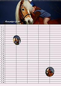 Haflinger Pferde - Stall- und Familienplaner 2019 (Wandkalender 2019 DIN A2 hoch) - Produktdetailbild 9