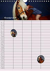 Haflinger Pferde - Stall- und Familienplaner 2019 (Wandkalender 2019 DIN A4 hoch) - Produktdetailbild 10