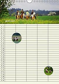 Haflinger Pferde - Stall- und Familienplaner 2019 (Wandkalender 2019 DIN A4 hoch) - Produktdetailbild 13