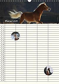 Haflinger Pferde - Stall- und Familienplaner 2019 (Wandkalender 2019 DIN A3 hoch) - Produktdetailbild 2