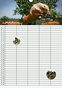 Haflinger Pferde - Stall- und Familienplaner 2019 (Wandkalender 2019 DIN A3 hoch) - Produktdetailbild 7