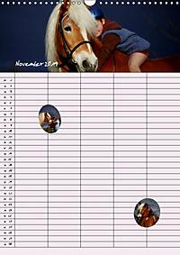 Haflinger Pferde - Stall- und Familienplaner 2019 (Wandkalender 2019 DIN A3 hoch) - Produktdetailbild 11