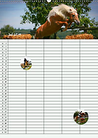 Haflinger Pferde - Stall- und Familienplaner 2019 (Wandkalender 2019 DIN A2 hoch) - Produktdetailbild 7