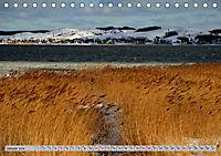 Halbinsel Mönchgut - Rügens schönste Seite (Tischkalender 2019 DIN A5 quer) - Produktdetailbild 1