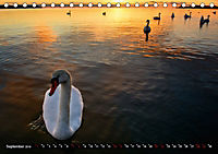 Halbinsel Mönchgut - Rügens schönste Seite (Tischkalender 2019 DIN A5 quer) - Produktdetailbild 9