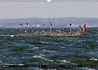 Halbinsel Mönchgut - Rügens schönste Seite (Wandkalender 2019 DIN A3 quer) - Produktdetailbild 5