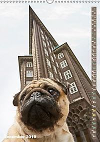 Hamburg - a pug city (Wall Calendar 2019 DIN A3 Portrait) - Produktdetailbild 12