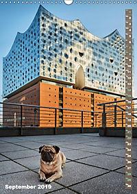 Hamburg - a pug city (Wall Calendar 2019 DIN A3 Portrait) - Produktdetailbild 9
