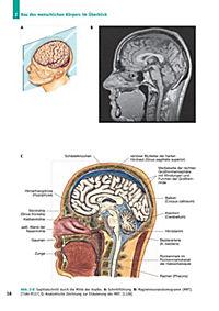 Handbuch Anatomie - Produktdetailbild 3