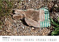 Handschuhe - verloren - vergessen (Wandkalender 2019 DIN A2 quer) - Produktdetailbild 10