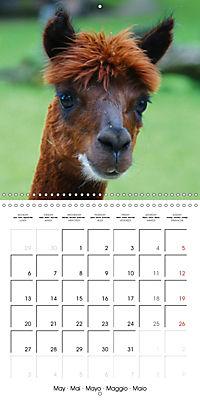 Happy Farm Animals (Wall Calendar 2019 300 × 300 mm Square) - Produktdetailbild 5