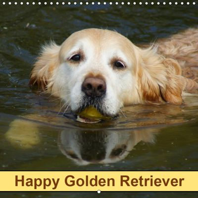 Happy Golden Retriever (Wall Calendar 2019 300 × 300 mm Square), kattobello
