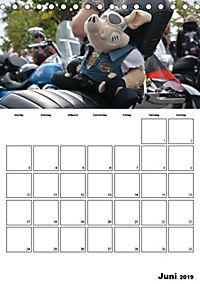 Harley Davidson Familienplaner (Tischkalender 2019 DIN A5 hoch) - Produktdetailbild 8