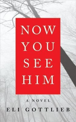 HarperCollins e-books: Now You See Him, Eli Gottlieb