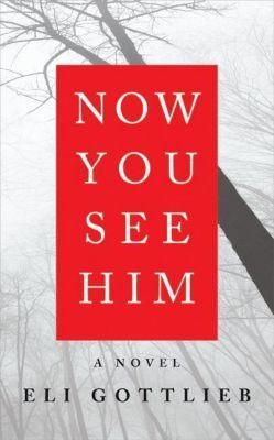 HarperCollins e-books: Now You See Him, Eli Gottlieb