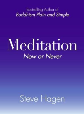 HarperOne: Meditation Now or Never, Steve Hagen