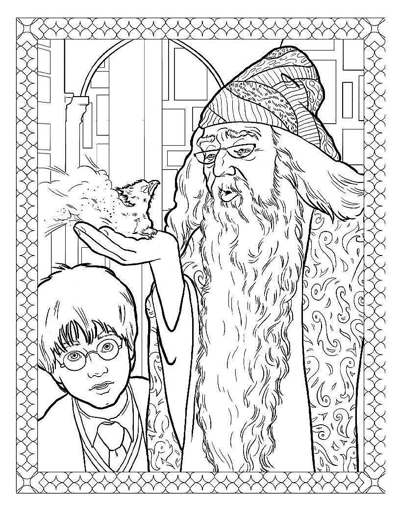 Harry Potter Magische Wesen