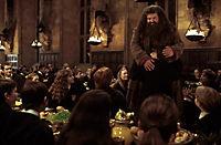 Harry Potter und die Kammer des Schreckens - Produktdetailbild 3