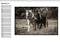 Harvest, pictures from yesteryear (Wall Calendar 2019 DIN A3 Landscape) - Produktdetailbild 2