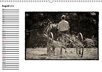 Harvest, pictures from yesteryear (Wall Calendar 2019 DIN A3 Landscape) - Produktdetailbild 8